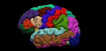 Brain-by-Reigh-LeBlanc-702x336